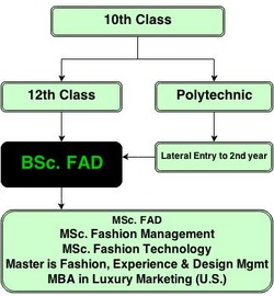BSc. FAD Career Path